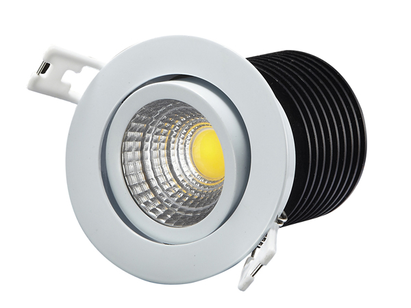 10W COB LED Down Light