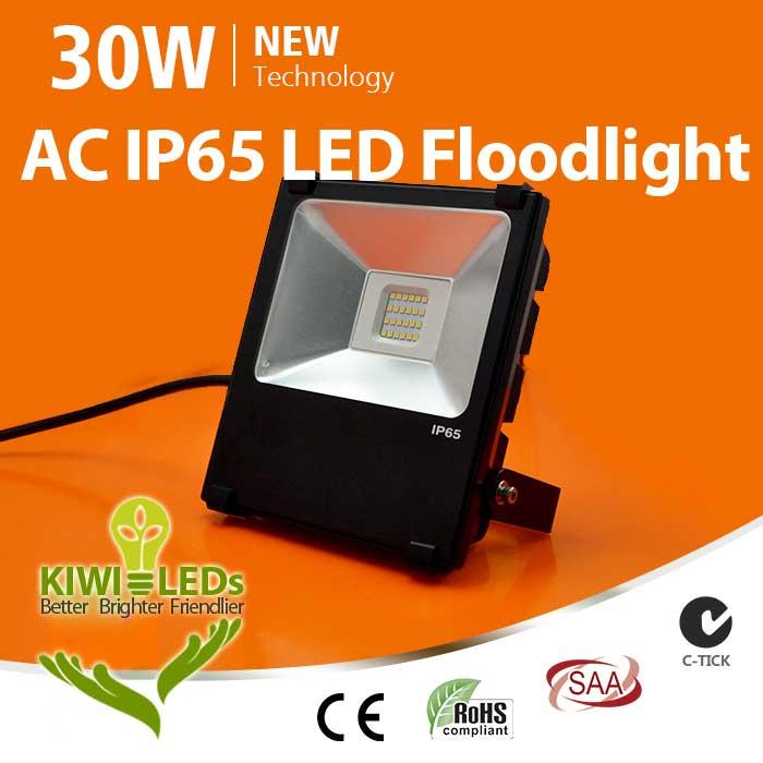 IP65 30W HV LED Floodlight