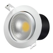 12W COB LED Down Light