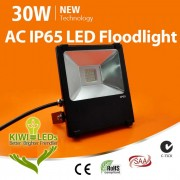 IP65 30W HV LED Floodlight